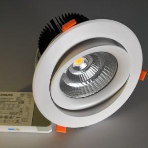 9W/15W/25W 30W/35W 50W CREE/Citizen COB LED Ceiling Down Light