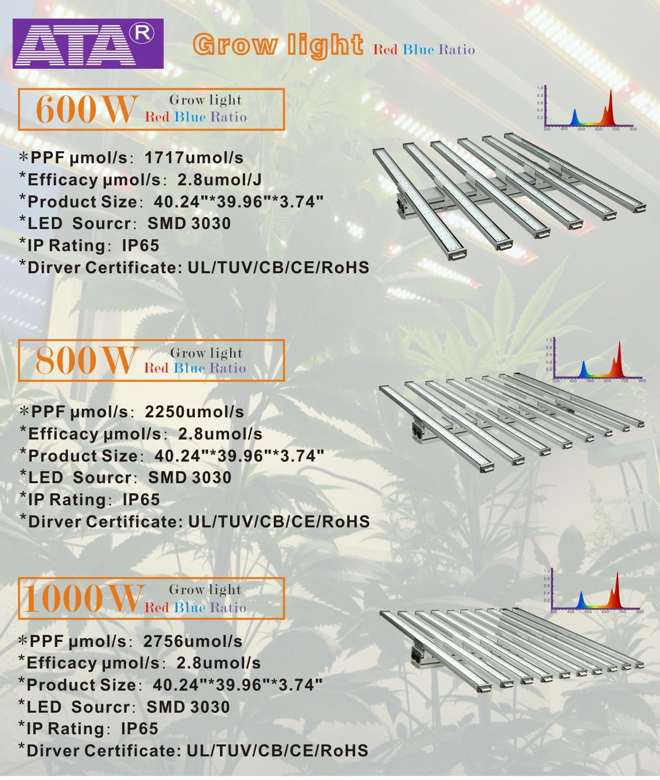 1000 led grow light (2)