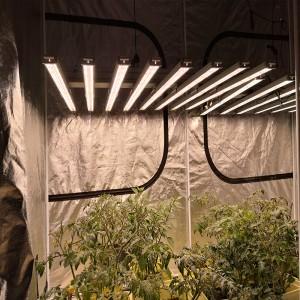 1000W LED Grow Light Full Spectrum